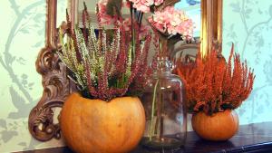 autumn decorations pumpkin